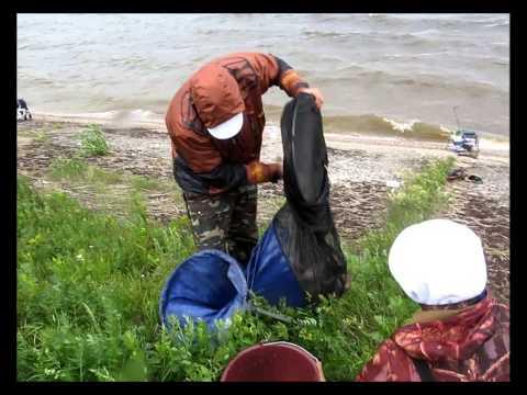 отчеты о рыбалке в дядьковской