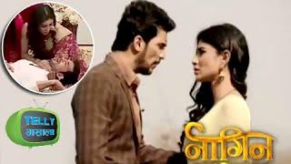 Shivanya Saves Ritik and Traps Ankush Raheja | Naagin