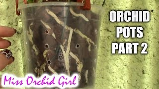 Choosing orchid pots Part 2 - Pot size and repotting