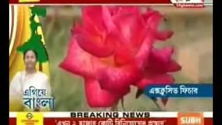 Egiye Bangla: Nature Park in Nadia