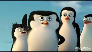 Penguins of Madagascar in marathi