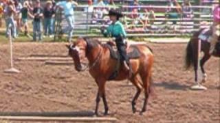 Best Arabian horse video ever