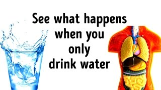 What Would Happen If You Replace All Drinks with Water?