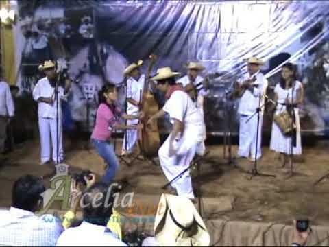 Son Raiz Arcelia Guerrero Los Carácuaros de Serafín Ibarra