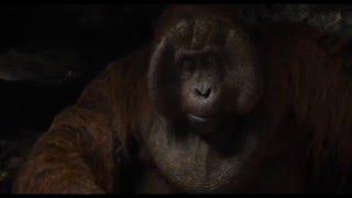 Le Livre de la Jungle | Extrait VF: Appelle-moi Louie | Disney BE