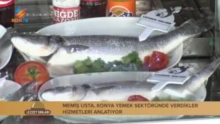 LEZZET SIRLARI - Balık