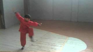 Jemal Iremadze (8 y. old) Nanquan 32 Forms - ჯემალი ირემაძე