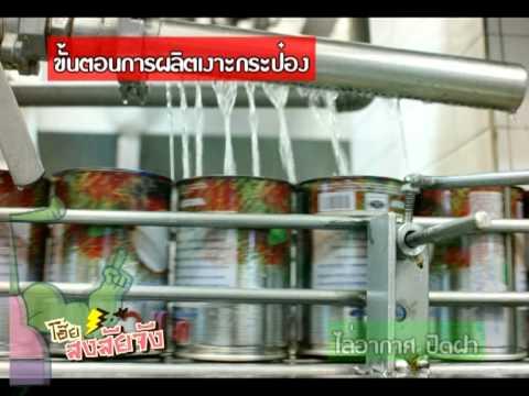 โอ๊ย สงสัยจัง โรงงานผลไม้กระป๋อง How to make Canned fruit