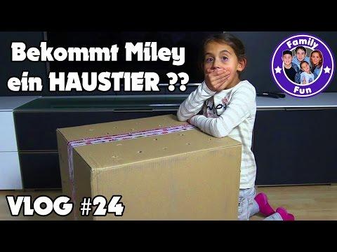 watch NEUES HAUSTIER FÜR MILEY ?? - OMG!! Die Überraschung! Daily Vlog #24 Our life FAMILY FUN