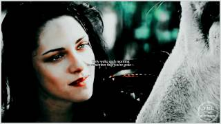 ● Snow White & the Huntsman || Winter Bird ~