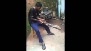 Valiha instrument (Madagascar)