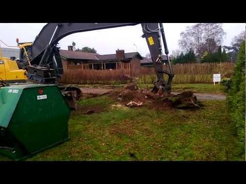 Volvo 27 tonnare gräver upp en stor björkstubbe på flera ton.
