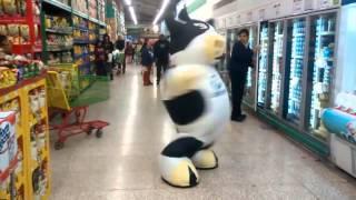 젖소인형탈 경지에 오른 알바생 댄스