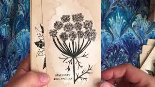 Leila + Olive Pythia Botanica Oracle Deck walkthrough