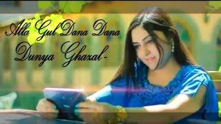 Dunya Ghazal - Alla Gul Dana Dana