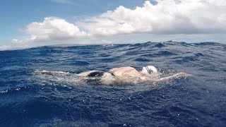 Woman survives shark scare during solo swim of Ka