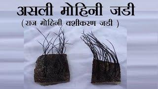 Mohini - Raj Mohini Jadi -  मोहिनी - राज मोहिनी जड़ी जानकारी 9826264966