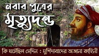 একমাত্র পুত্রকে কেন হত্যা করেছিলেন নবাব মুর্শিদকুলি খান?    Why did Murshid Quli Khan kill his son?