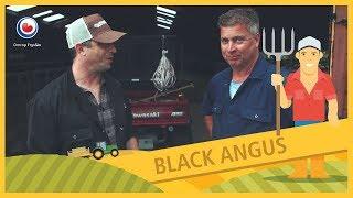 BUORKJE FOAR BEGJINNERS: Black Angus