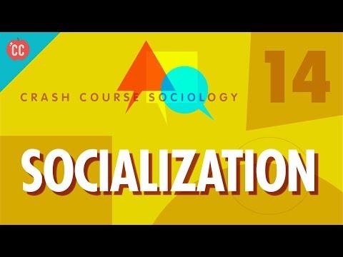 Xxx Mp4 Socialization Crash Course Sociology 14 3gp Sex