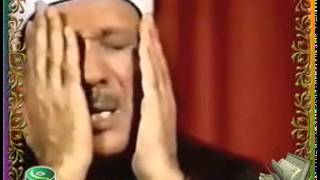 Quran Video - Ar Rahman -Abd Al Basit Abd As Samad