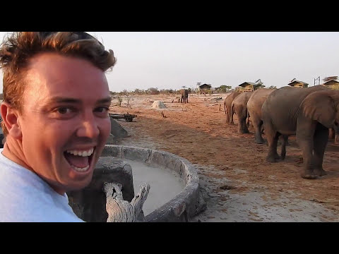 Xxx Mp4 African Safari 2015 3gp Sex