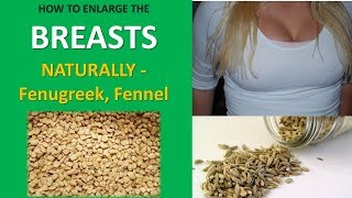 HOW TO ENLARGE THE BREASTS NATURALLY - Fenugreek, Fennel