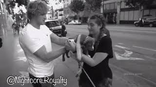 Skinny Love - R.I.P Arya (Evans Dog) Tribute