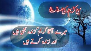 Mera Nabi S.A,W Zinda bi ha r Logo Ko zinda be Kerta He | Islamic Whatsapp Status  | Saqib iqbal