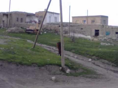 halvay yaylasi April 7 2011.wmv