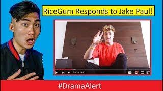 RiceGum RESPONDS to Jake Paul! #DramaAlert Logan Paul's Lil Brother! Erika Costell LYING!