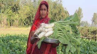 Farm Fresh Radish Recipe Delicious Radish Chicken Curry MULA CHICKEN RECIPE | Village Food