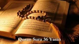 Quran Sura 36 Yasin