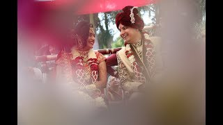 Harsh Vyas & Payal Vaidya Wedding Video