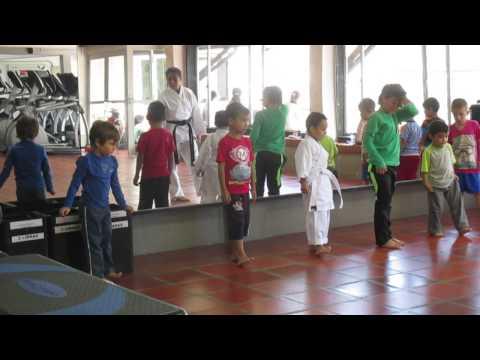 Movimientos basicos del Karate Do por LUCAS BERRIO
