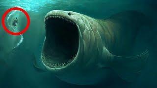 10 BIGGEST Underwater Creatures In The world!
