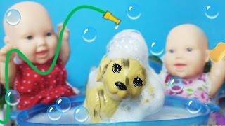 O Primeiro Banho do Max - Lilly Doll