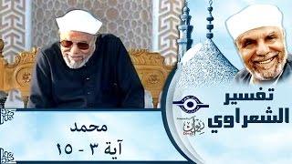 الشيخ الشعراوي | تفسير سورة محمد، (آية ٣-١٥)