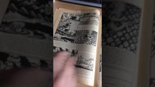 antique ephemera the hotspur comic june 23rd 1953 no 1024