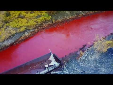 Trend Update: Blood Red Daldykan River,