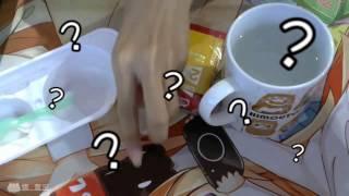 【娜喵食玩】日本Kracie蘇打味糖果