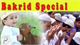 Eid ul fitr 2018 india | India | Eid al-Adha | Saudi Arabia | United Kingdom | Goats