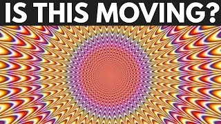 Are You Tricked By These Optical Illusions?