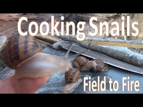 Catch N Cook Snails -Survival Escargot-