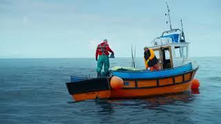 Shark attack scene    Deep Blue Sea 2   