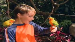 Barney ABC animal full