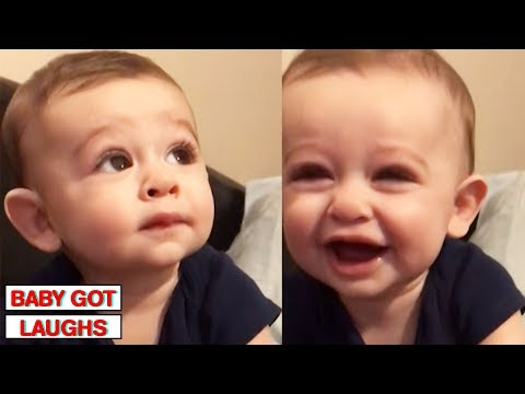 Xxx Mp4 Funniest Babies Of 2018 Try Not To Laugh Challenge 3gp Sex