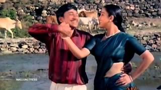 Geetha Old Mallu Hot Navel