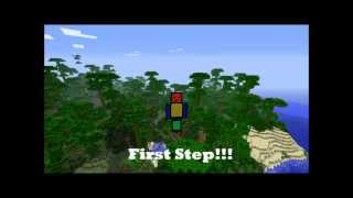 First Step-Minecraft (Official Music Video)