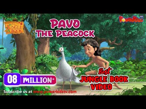 Xxx Mp4 Jungle Book Season 2 Episode 1 Pavo The Peacock 3gp Sex